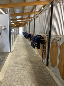 CP Riding School Stable