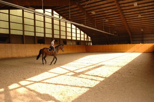 Indoor riding arena | Carlo Pfyffer Horse Trading and
