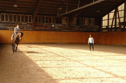 Indoor riding arena   Carlo Pfyffer Horse Trading and